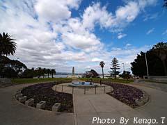 2005.08.30(14:41) 公園内(西オーストラリア パース キングス・パーク)