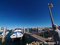 2005.09.02(15:16) ボートから降りた(西オーストラリア エクスマウス 港)