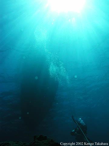 光とボート